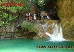 CAMEL SAFARI HALF DAY : Waterfalls of Damajagua
