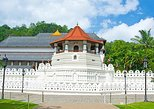 Discover Kandy -Spice Garden visit Tea Factory and Kandy city tour (All-Inclusive Private Day Trip From Colombo)