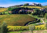 Private wine experience in Chianti hills with gourmet lunch