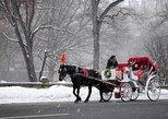 45 Minutes Central Park Tour