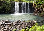 Best Road to Hana Adventure Tour