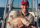 4 Hr - Private Near Shore Fishing Charter (PM)