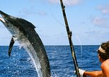 Dubai Deep Sea Fishing PrivateTour for 1 to 6 people