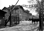 AUSCHWITZ GUIDED TOUR