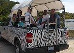 Private Tailor-Made Safari Tour