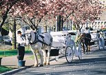 45-Minute Beacon Hill Park Carriage Tour