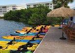 Kayak Rental - 1 Hour