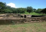 Private Walking Tour of Leon Viejo Ruins