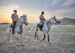 Arabian Sunset Horse Riding & Stable Tour