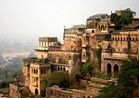 Private Day Trip of Neemrana Fort-Palace Including Zip Line and Camel Cart Ride