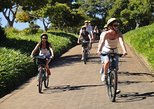 go biking across the historic wineries of south africa