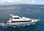Bali - Lembongan Fast Boat Transfers