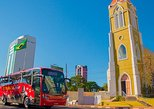 Sightseeing Bus Tour of Foz do Iguaçu