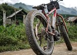 E-Mountain bike and Elephant Experience