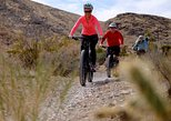 Red Rock Canyon Mustang Trail Half-Day Guided Bike Tour