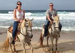 Aruba WARIRURI Natural Bridge 3 hrs Horseback Riding For Advanced Riders