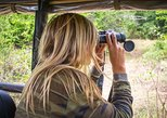 Leopard Safari Tour in Yala National Park