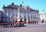 Panoramic City Tour of Copenhagen