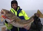 Fishing-trip (Öresundsfiske)