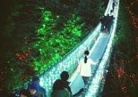 Private Christmas Tour: Vancouver & Capilano Bridge
