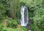 Private Tour: Munduk Waterfalls Trekking Tour