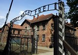 Auschwitz - Birkenau Small Group Memorial Tour from Krakow
