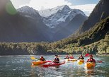 Milford Sound Coach, Nature Cruise and Kayak with buffet lunch