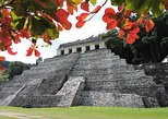 Palenque Archaeological Site Small-Group Tour from Villahermosa