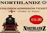 Child Ticket (2-12)