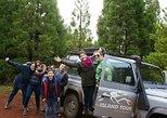 Half Day Terceira Island Tour by 4x4