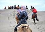 Horseback Riding Dunes