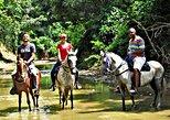 Ecotourism Horseback Tour in San Basilio de Palenque