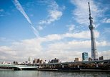 1 Day Charter tour For Tokyo Sightseeing