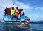 Cozumel Coral Reef Snorkeling by Glass Bottom Boat with Guide