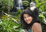 Jungle Island Admission with Transportation