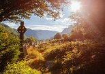 Glendalough, Powerscourt & Wicklow Mountains Small-Group Day Tour from Dublin