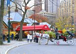 Horse Carriage Tours & Drop Off at The Tavern on the Green