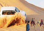DESERT SAFARI BY BUS WITH BBQ DINNER + DUNE BASHING