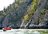 Ocean Raft Wildlife Adventure