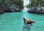Gilligan's Island + Ponce Tour from San Juan