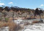 1-Day Isimila Stone Age Site
