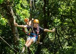 3-Day Rainforest and Reef: Cape Tribulation, Daintree Rainforest, Reef Safari