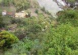PIA PIMA DE ASIA - ESPONGEIRO WALK LEVEL 5-1.100M 11 KM