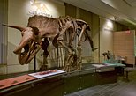 Canadian Museum of Nature Admission