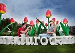 Special offer: Keukenhof tour from the Hague incl. visit Madurodam
