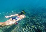 Amazing Snorkeling in Bali