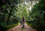 Bike Tour - Tijuca Rainforest Cycling Adventure