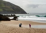 Dingle Peninsula Day Tour from Killarney: Including The Wild Altanic Way
