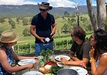Luxury Blue Mountains tour with Aussie BBQ lunch and wine tasting