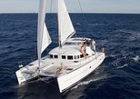 Mykonos Catamaran Day & Sunset Cruises with meals Drinks and transportation